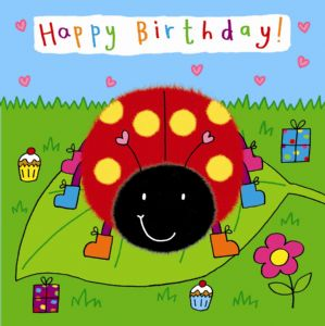 Childrens Birthday Card - Ladybird